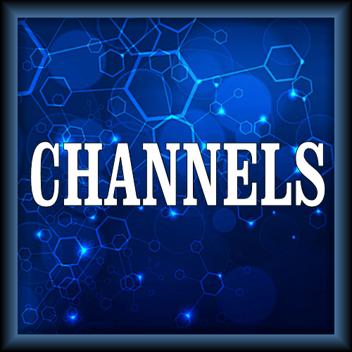 Index of /butter-addons/_repo/plugin video channels